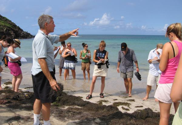 Students on beach taking notes, Robin lecturing